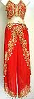 Professional Belly Dance Costumes Dress B Flaming Red