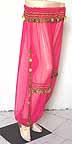 Magenta Harem Pants Belly Dancing b Gold