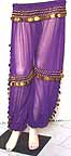 Gold Coin Purple Harem Pant Belly Dancing b